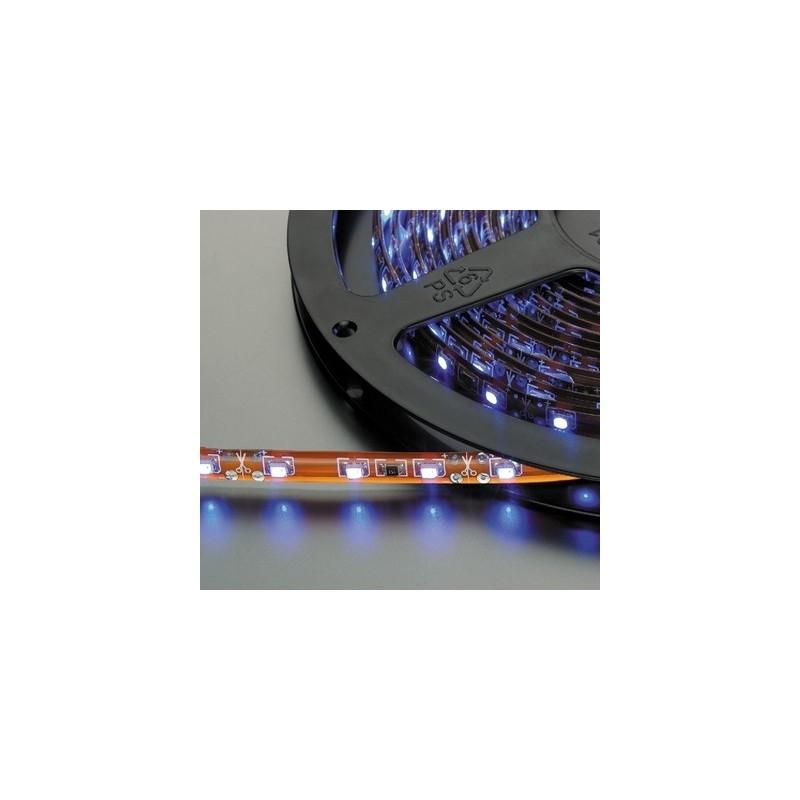 LEDS-5MP/BL